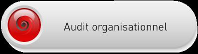 audi-organisationnel-bouton